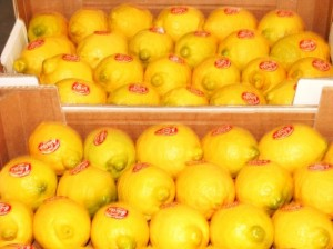 SORRENTO LEMON